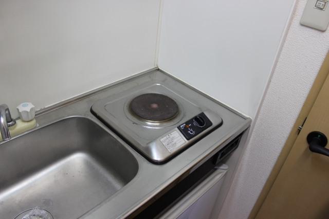 Standard kitchen - one hob, no sideboards, no fridge